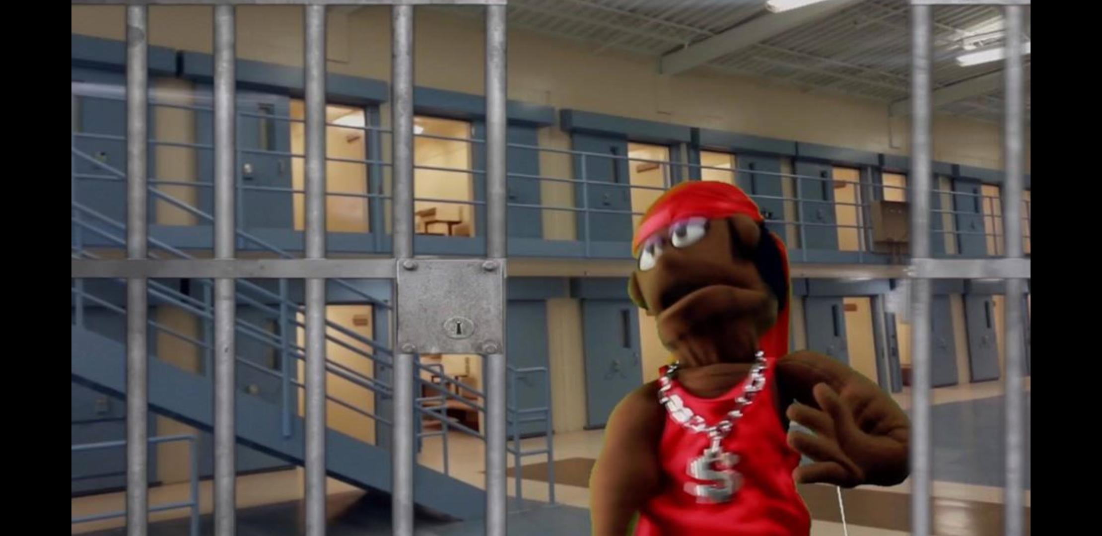 Ganster Muppet, Can't Get John Anderson Rap